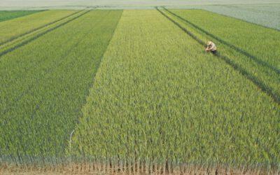 Das war der Profi-Praxistag 2020: Die Herausforderungen der Landwirtschaft
