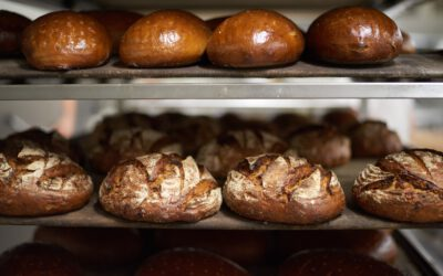 Bäckerei Wippler: Moderne Tradition am Dresdner Elbhang